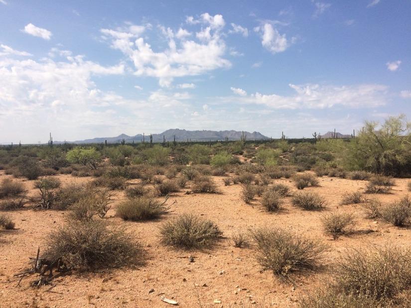 desert-990570_960_720